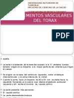 elementosvascularesdeltorax-1102165085542-phpapp02.pptx