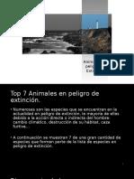 Animales en Peligro de Extinción.