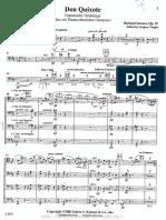 Strauss - Don Quixote Cello Tutti