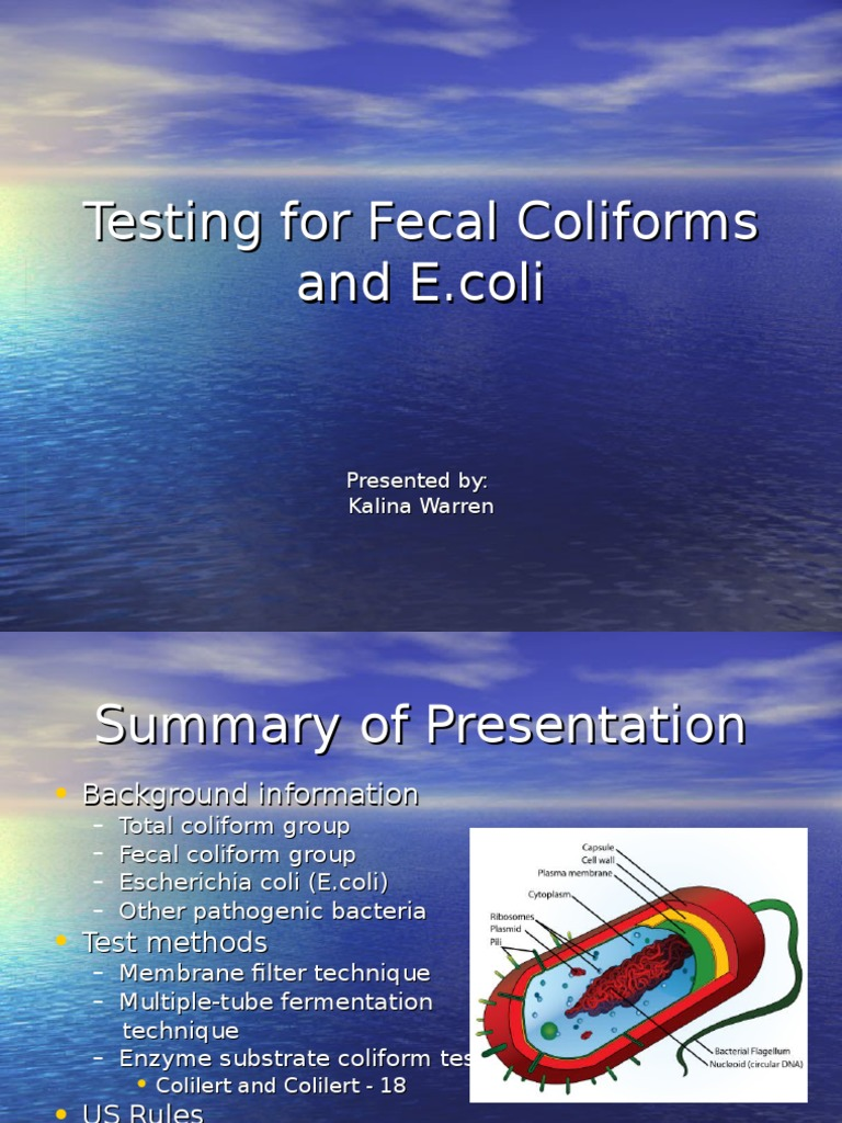 Testing for Fecal Coliform Sande   Microbiology   Prokaryote