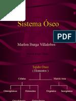 02. Sistema Oseo.ppt