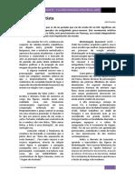 arte renacentista.pdf
