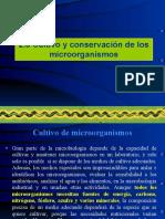 Cultivo y Conservacion de Microorganismos