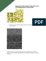 Perbedaan Pengamatan Mikrostruktur Baja AISI 5115 Dengan Menggunakan OM Dan SEM