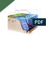 Klasifikasi Lingkungan Laut Dan Darat