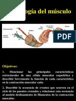 2-1_PPT_FISIOLOGIA_DEL_MUSCULO_2016_I