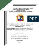 Informe de Practicas Pre Profecionales Sonia Empastado