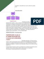 Transcripcion Fisiopatologia - Orihuela