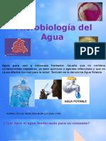 Micro Biolog i Adel Agua