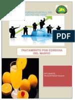 tratamientoposcosechadelmango.pdf