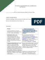 Informe de Morfologia Bacteriana