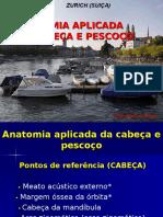 Anatomia Aplicada de Cabeça e Pescoço - Dr. Marcos Alves 14.05