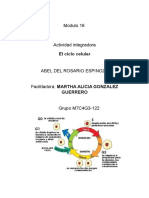 Del Rosario Espinoza Abel M16S2 Elciclocelular