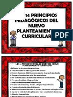 Principio s Pedagogic Os 2016 Ep Me