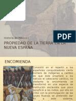 118528888-Propiedad-de-la-tierra-en-la-Nueva-Espana1.pptx