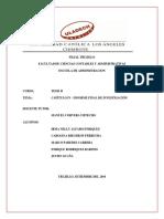 MIMI Capítulo IV.pdf