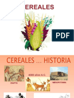 Unidad 2 Cereales 1