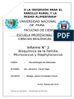 Informe 2 Micrococcus y Staphyloccus