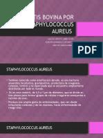 Mastitis Bovina Por Staphylococcus Aureus.pptx
