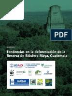 MBR-Deforestation_150213-ES-2 (1).pdf