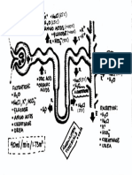 pdf_75