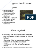 6. Osmoregulasi Dan Ekskresi