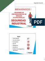 Curso Seguridad Industrial