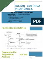 Fermentación Butírica y Propiónica EXPO VERSION 2.1 (1)