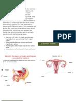 Reproductive System SIM