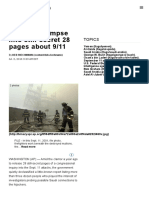 File 17 is Glimpse Into Still-secret 28 Pages About 9_11
