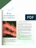 Genetica 7a Ed Bases Cromosomicas de la Herencia