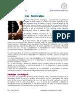 Perspectivas_sociologicas
