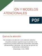 Atención y modelos atencionales 2