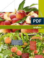 Catalogo Frutales