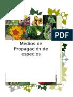 Medios de propagación de especies vegetales