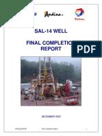 SAL-14_Informe final.pdf
