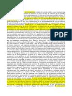 Desgrabado Castellani Deuda externa.doc