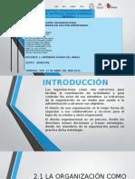 EXPOSICION DISEÑO ORGANIZACIONAL.pptx