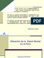 00 Situacion de La Salud Mental en El Paisppt