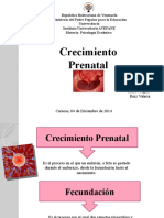 Exposicion Prenatal