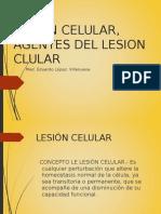 LESION CELULAR, AGENTES DEL LESION CLULAR.ppt