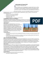 Resumen de Mecanismos de Produccion
