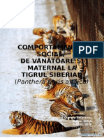 Comp. Social-Vanatoare-maternal Tigrul Siberian