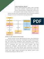 Regulasi Sekresi Kelenjar Adrenal