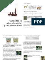 Web Curios Ida Des Sobre El Caballo y Caballos Curiosos