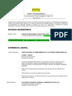 Formato CV.docx