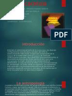 Corrientes Contemporaneas de La Antropologia