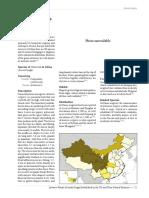 Artemisia.pdf