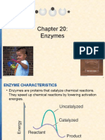 Chapter 20 Enzymes
