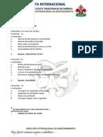 CURSO PRELIMINAR IM.pdf